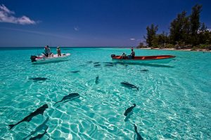 Fishing in the Seychelles